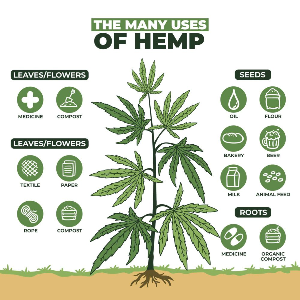Uses of hemp plant